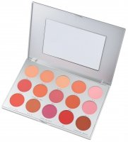 KRYOLAN - PROFESSIONAL ROUGE SET - Paleta 15 róży do policzków - ART. 5115